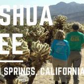 Ep. 80: Joshua Tree National Park & Palm Springs | California RV travel camping