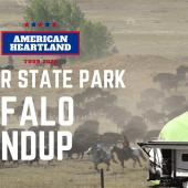 Ep. 175: Custer State Park | Buffalo Roundup | South Dakota RV travel camping hiking kayaking