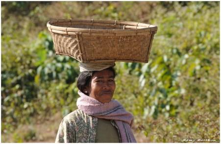 Birma-18