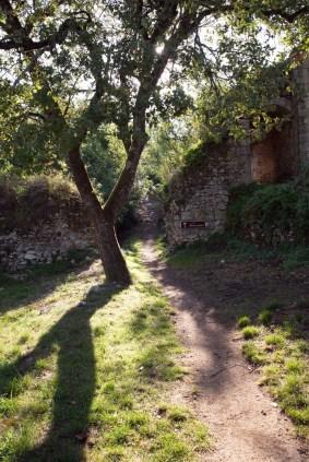 Sentier vers le Roc aux sorciers-K17_3865