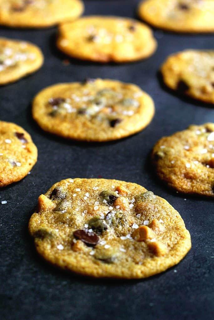 Pumpkin Chocolate Chip Cookies 1 683x1024 - Pumpkin Chocolate Chip Cookies