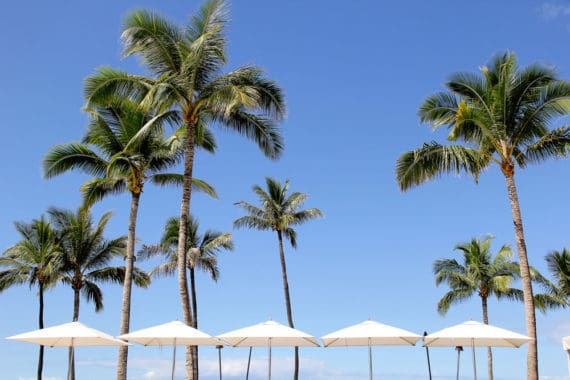 Things to Do In Maui- Heading to Hawaii? Check out this post featuring the very best Maui restaurants along with our perfect BabyMoon and travel tips.