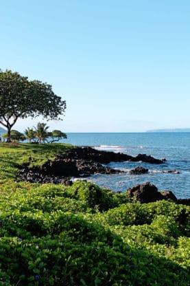 Best Things To Do In Maui Hawaii - Babymoon Ideas