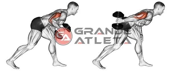 tríceps coice