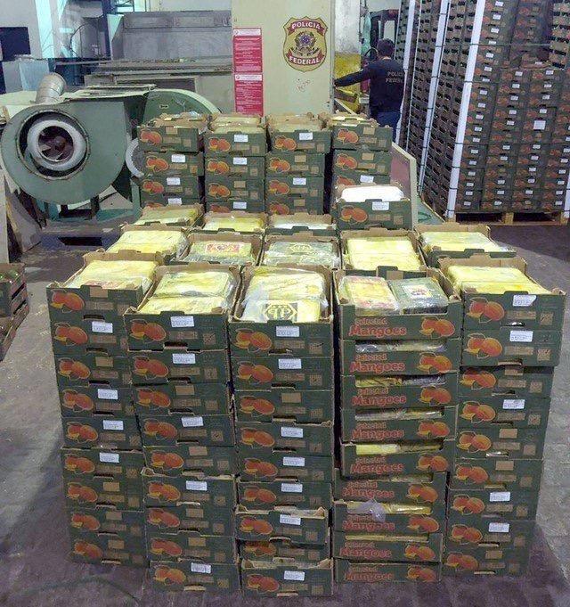 Polícia Federal faz apreensão recorde de cocaína no Porto de Natal: 1.275 kg