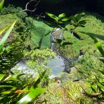 caanyoning a la Reunion avec Grande Ravine