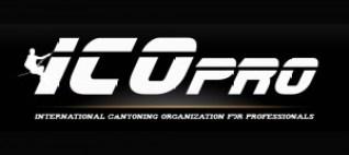 Canyoning à la Réunion avec ICOpro