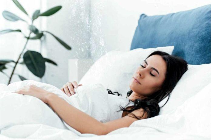 colocar plantas en el dormitorio - Determinan que las plantas domésticas realmente no purifican el aire
