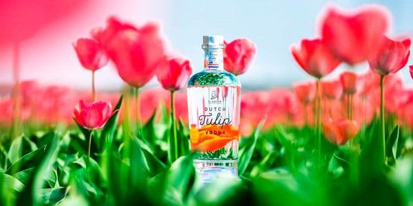vodka holandés de tulipán