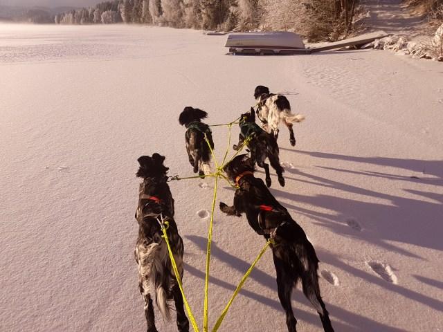 Enda en fin dag på ski