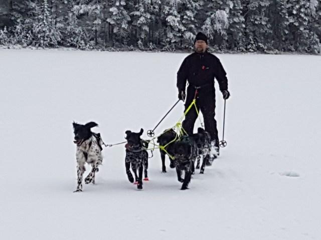 Skitur med flokken