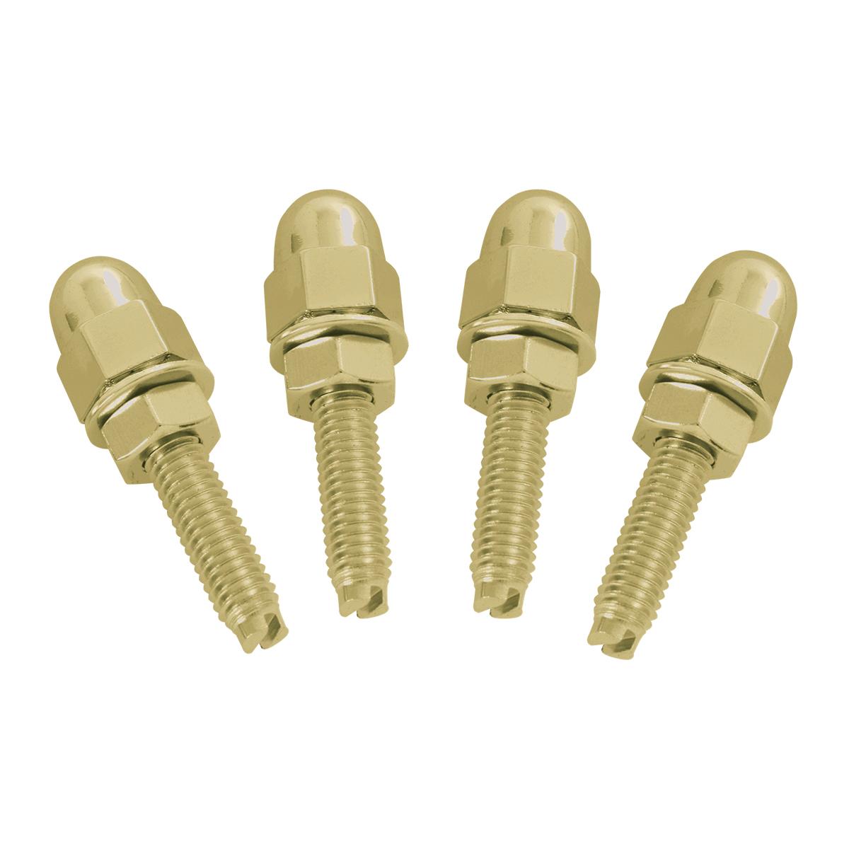 Gold Color Acorn Fastener Set