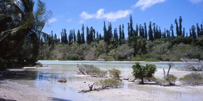 Ile des Pins, Nouvelle Calédonie. 2010