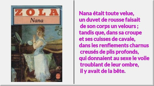 Nana-ZOLA-citation-1