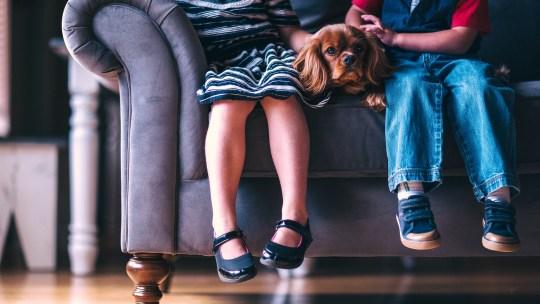 Comment faire obéir les enfants ?