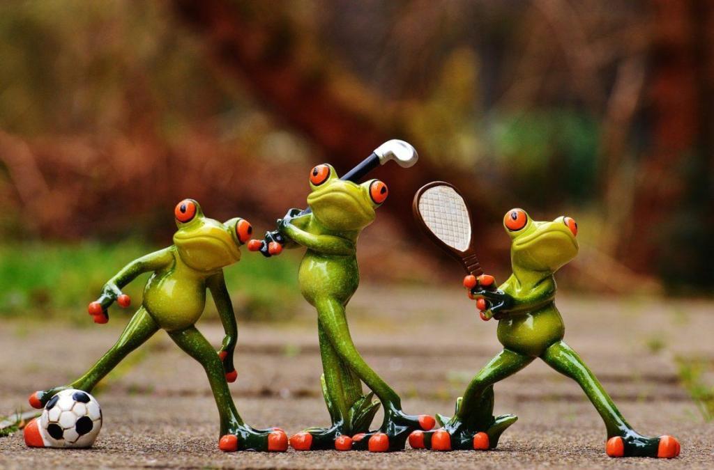 Le mouvement vous sauvera : grenouilles sportives