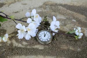 Une montre à gousset dans le sable