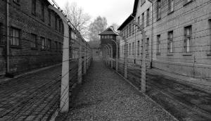 Camp de concentration de Auschwitz
