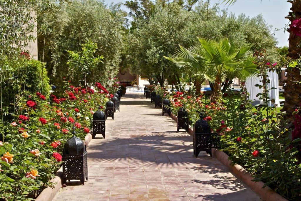 Les allées du Maroc et leur clarté ensoleillé