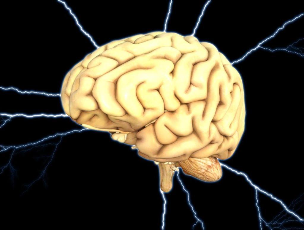 Un cerveau plein d'énergie