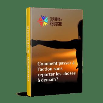 Le livre «Comment passer à l'action sans reporter les choses à demain?»