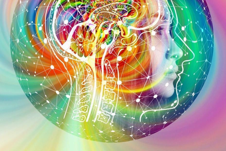L'intuition humaine en couleur