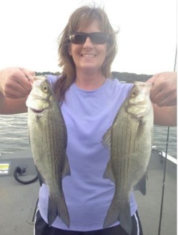 The White Bass Are Biting Like Crazy!