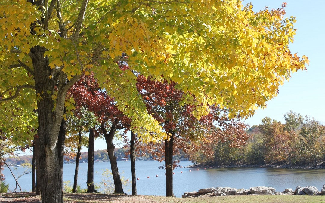 Time To Plan A Fall Getaway To Grove and Grand Lake