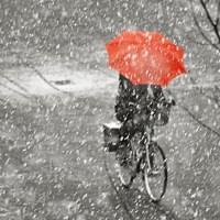 Umbrella Day?
