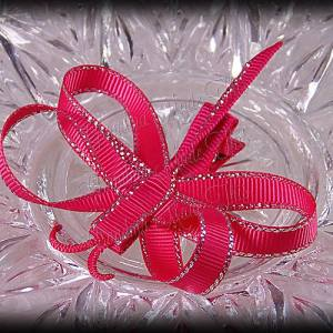 Dragonfly Ribbon Sculpture Hot Pink Silver Glitter Sidestitch