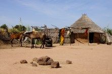 Gambian village