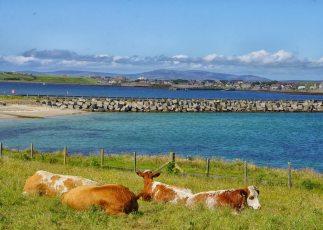 Churchill barrier Orkney