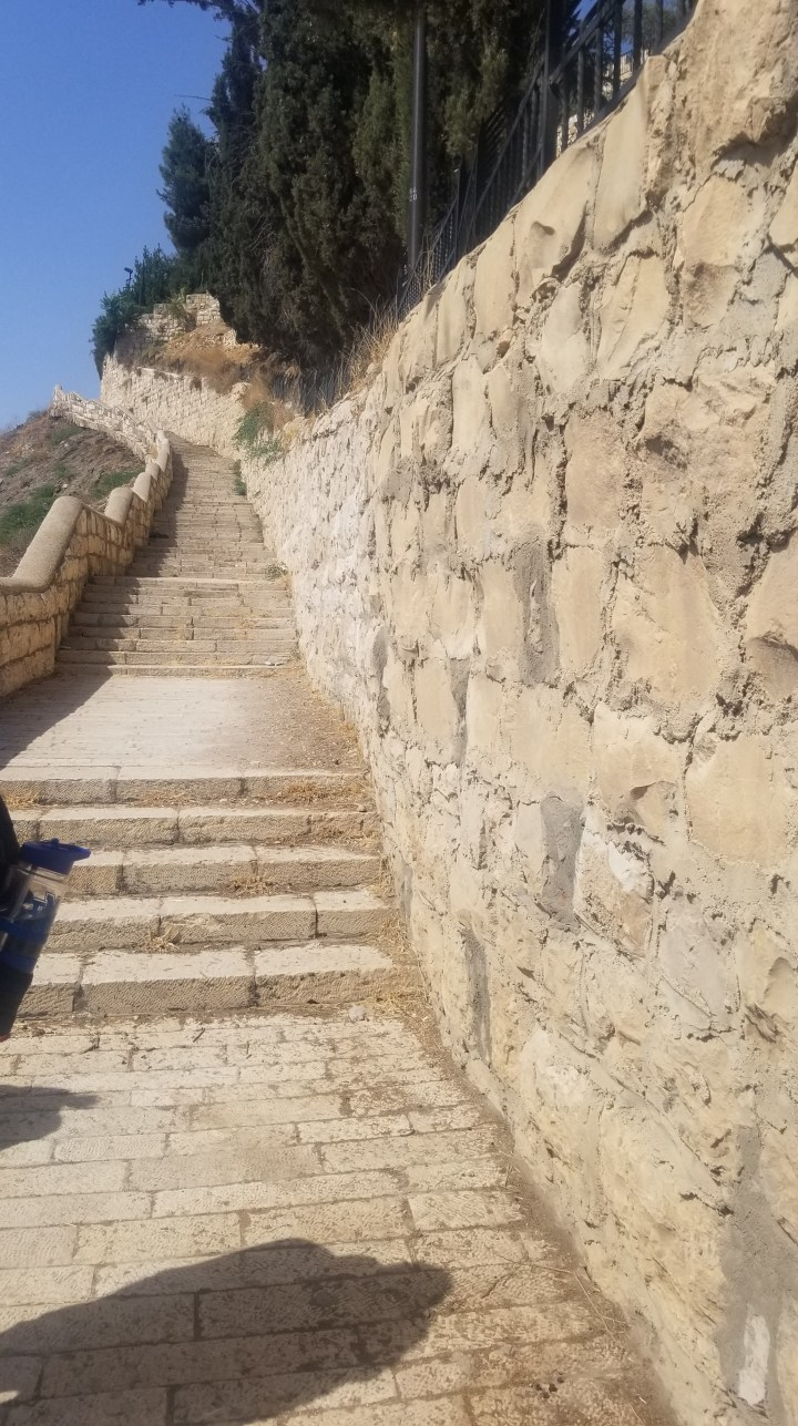 {Israel} Day 7: Mount of Olives, Chruch of All Nations, Western Wall, City of David National Park
