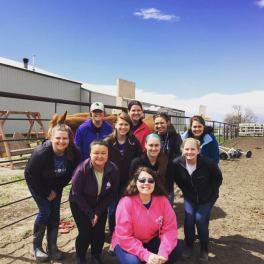 EquineAssistedTherapy2017 9