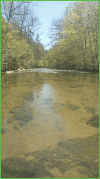 Spring Is Breaking on the First Broad River