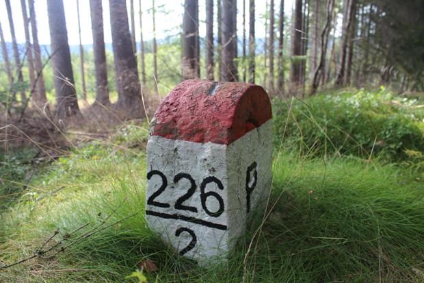 CZPL – odcinek III/226
