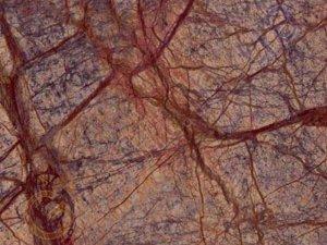 Мрамор bidasar brown