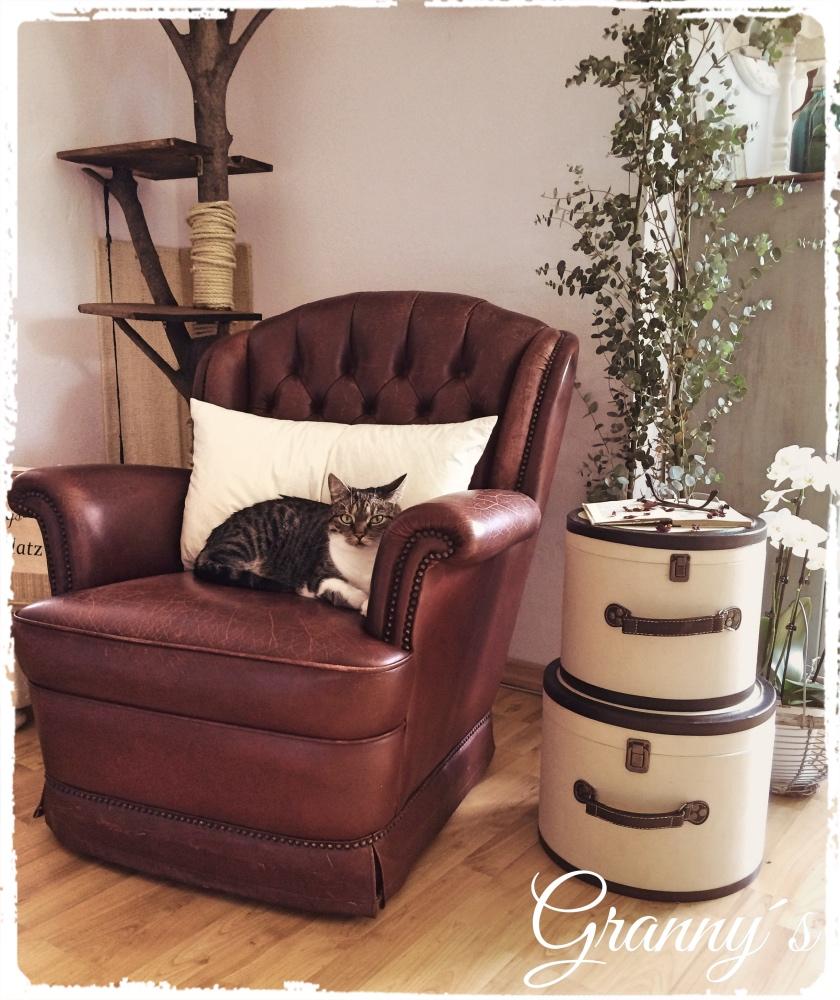 Vintage-Sessel Lust auf Veränderung
