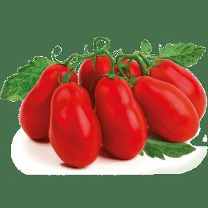 foto pomodori