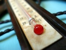 Thermometer250