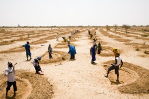 Soil water conservation in Niger. Credit Fatoumata Diabate, Oxfam