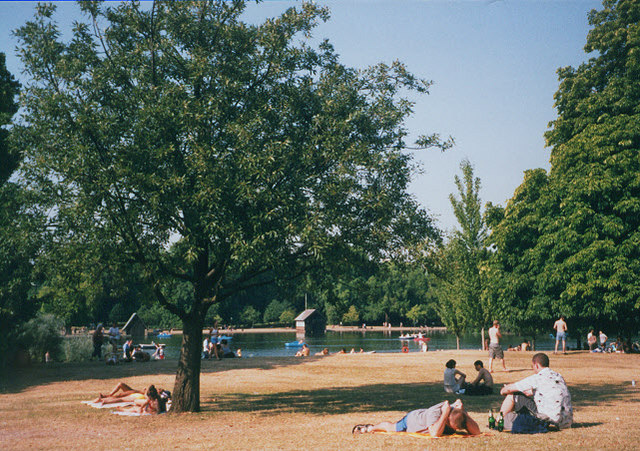 Hyde Park, with parched ground and people sunbathing