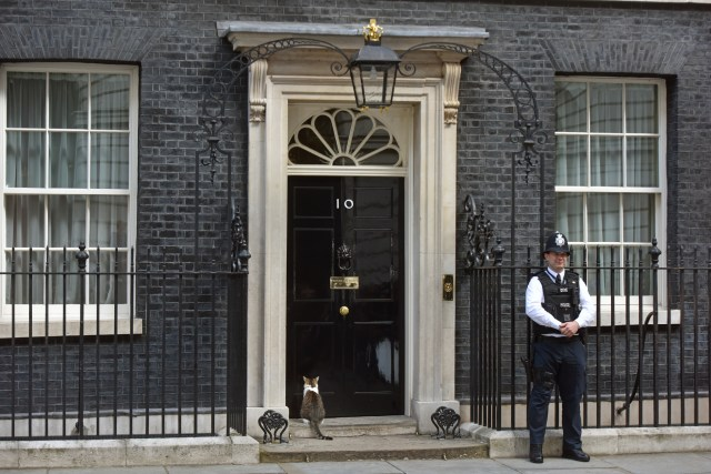 London, UK - July 13th 2016:The front elevation and doorway of 10 Downing Street, with a cat and a British policemen standing outside. It is the official office and HQ of the British Prime Minister