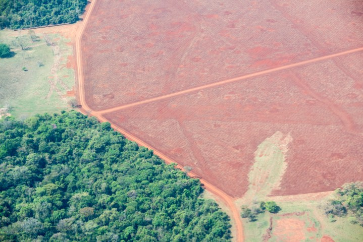 Aerial view of area deforested for agricultural activities in Mato Grosso do Sul state, Brazil