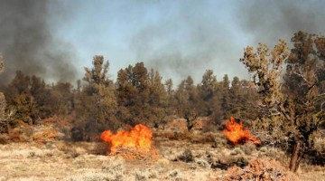 Wildfires & Smoke