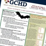 Grant County Bat Tests Positive for Rabies