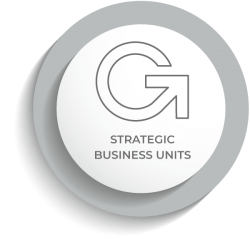 ATM Strategic Business Units