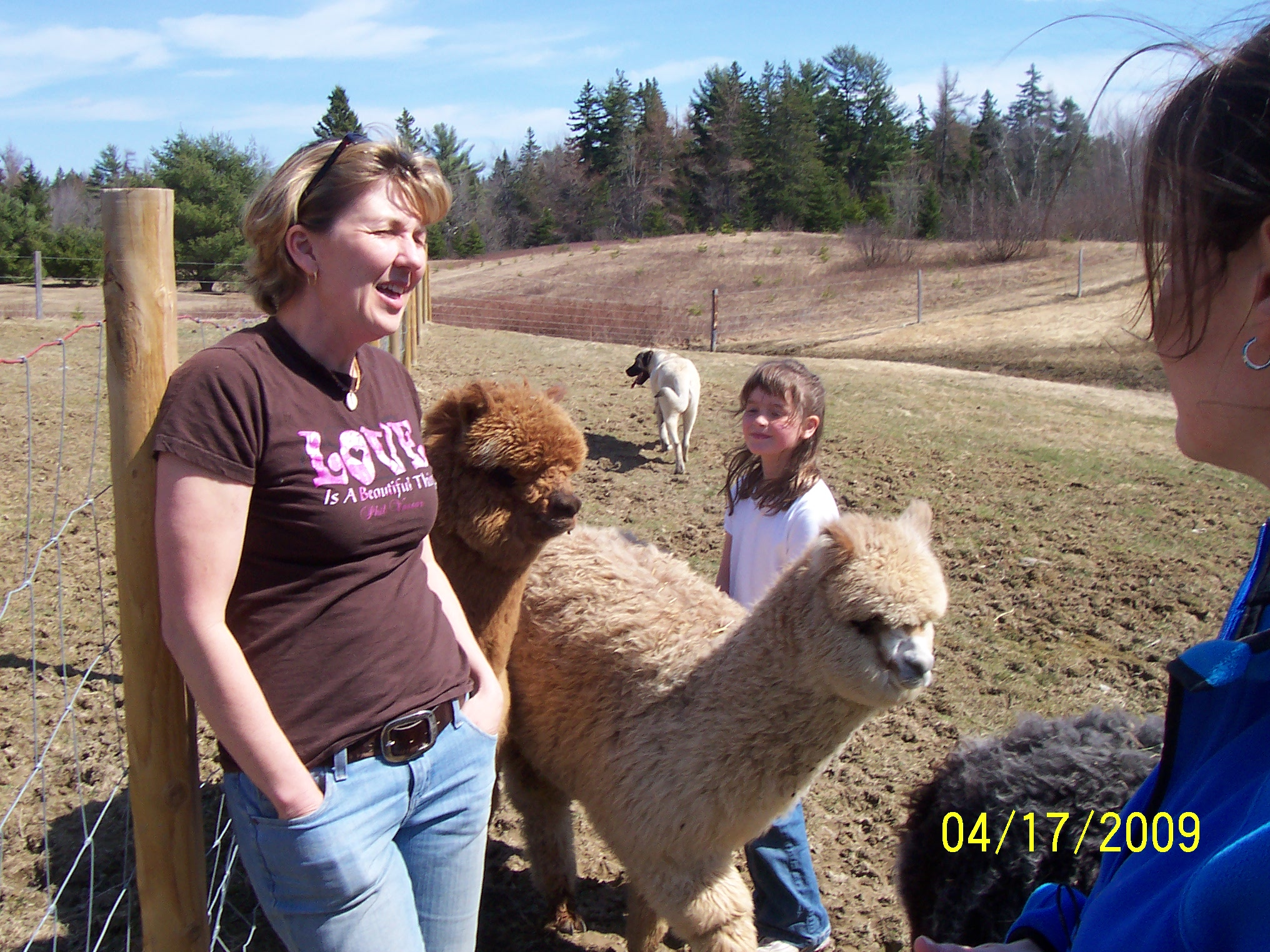 Laura, Olivia, Nicole and Alpacas