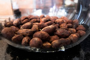 Peruvian cocoa beans unroasted