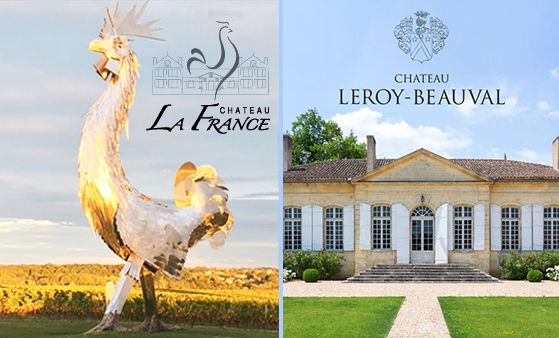 Chateau La France Chateau leroy-beauval